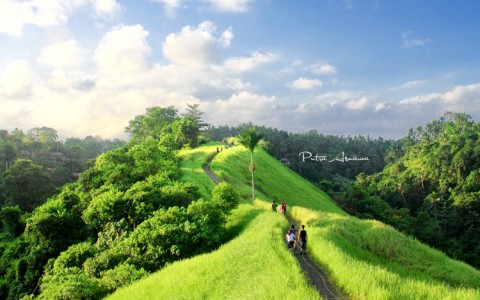 Ubud Joging Trek